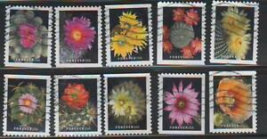 Cactus Flowers, 2019, Set of 10, Scott 5350-5359, used and off paper