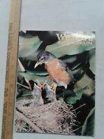 Wildlife In North Carolina March 1986 Birds walleyes nature fishing