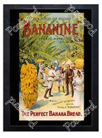 Historic Bananine, banana bread Stanley & Livingstone,ca 1871 Ad Postcard
