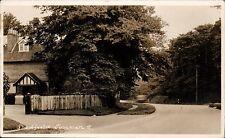 Shedfield near Wickham. Shedfield Common # 2.