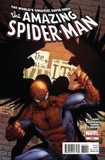 Amazing Spider-Man #674 (NM)