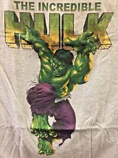 Incredible Hulk T-Shirt L Large Gray New