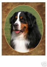 Bernese Mountain Dog Mousemat No 1 by Starprint - Auto combined postage