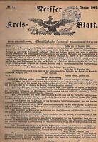 NEISSE NYSA Schlesien Neisser Kreisblatt vollständiger Jahrgang 1899 ORIGINAL!