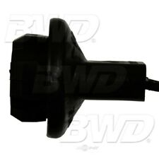 License Lamp Socket Rear BWD PT2236