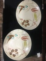 "2 Red Wing Pottery Random Harvest Futura Shape OvaL Dinner Plates 10 1/2""1950's"