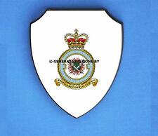 ROYAL AIR FORCE 7 FORCE PROTECTION WING WALL SHIELD (FULL COLOUR)