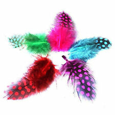 "FEATHERS Fluffy Guinea Fowl Feathers MIXED Colours Approx 20  1""- 3""   2 - 7cm"