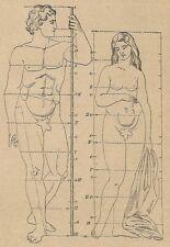 A4338 Misura del corpo - Incisione - Stampa Antica del 1887