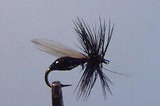 10 x Mouche de peche Sèche Fourmi Noir F. D H12/14/16/18 dry fly ant black mosca