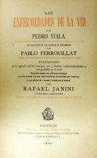 Las Enfermedades De La Vid For Pedro Viala Very Rare 1891 Original Book W/Litho.