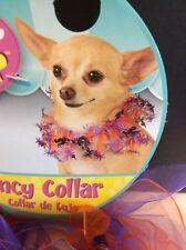 Dog Halloween Costume Purple & Orange Fancy Collar With Spiders Medium-Large