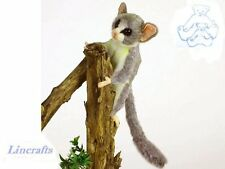 Senegal/Lesser Bush Baby Plush Soft Toy by Hansa Dark Colouring 5324
