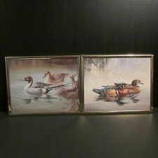 "Pair of Duck Prints signed ""Nichols"" 8"" by 10"""