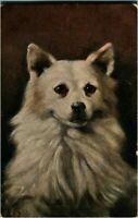 Portrait of a dog postcard antique colour charming cute adorable