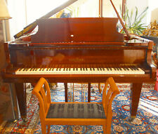 original brauner Schimmel Flügel Nr. 223960 Klavier schöner Klavierlack