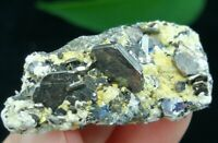 43mm Hexagonal Bright Golden Pyrrhotite w/ Quartz Inner Mongolia China B6185