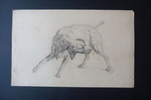 GERMAN SCHOOL 1871 - FINE STUDY OF A DOG SIGN. GUGEL - CHARCOAL DRAWING