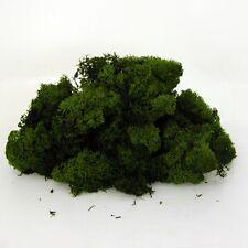 """""""Finland"""" Reindeer Moss dried preserved dark green for craft 450g bulk bag"""