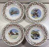 National Wildlife Federation Wild Birds - Set Of 4 - Rim Soup Bowls - Brown Leaf