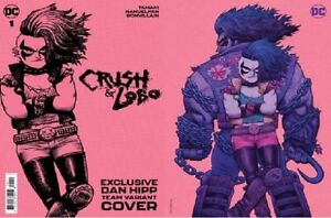 CRUSH & LOBO #1 TEAM COVER DAN HIPP FOIL VARIANT NM 1ST PRINT BAG&BRD in hand