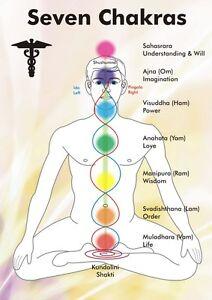 Chakra Healing Energies Wall Chart Poster Explanations Gemstones  A5 Laminated