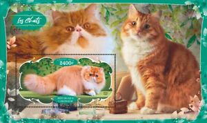 Domestic cats gatos Katzen 2020 s/s MNH #VG2830