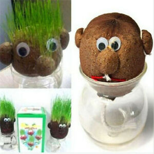 Magic Grass Head Hair Absorbent Flower Pot Planter Herb Plant Doll Toy