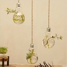 2017 Hanging Glass Plant Flower Vase Hydroponic Container Pot Home Wall Decor KJ