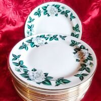 17 Vintage Homer Laughlin Nassau Eggshell Nautilus White Rose Dessert Plate USA