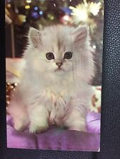 POSTCARD USED WISCONSIN, EAGLE RIVER--FLUFFY WHITE KITTEN