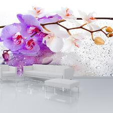 Fototapete Lila Weiß ORCHIDEE BLUMEN Wohnzimmer Tapete Wandtapete XXL 61