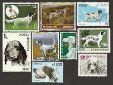 English Setter * Int'l Dog Stamp Art Collection* Great Gift Idea*