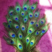 DIY 10pc Natural Plume Peacock Eye Feathers Tail Long for Bouquet Art Ornaments