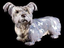 Dahl Jensen Copenhagen Skye Terrier Dog Porcelain 1102 Figurine~ Rare ~ Mint
