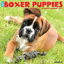 Just Boxer Puppies (dog breed calendar) 2021 Wall Calendar(Free Shipping)