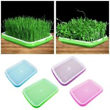 Seed Sprouter Tray Plant Germination Trays Double Layer Hydroponics Basket Nice