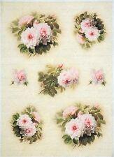Carta di riso-Vintage Rose Bianche-Per Decoupage Decopatch Scrapbook Craft sheet