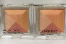 The Body Shop MATTE & SHIMMER CHEEK 01 Color Colour Blush Effect Satin X2