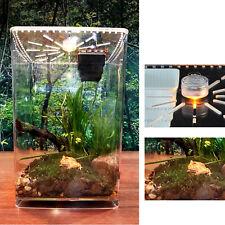 Clear Reptile Tank Insect Spiders Lizard Breeding Box Cage Pet Terrarium & Led L