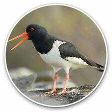 2 x Vinyl Stickers 25cm - Eurasian Oystercatcher Bird Cool Gift #12745