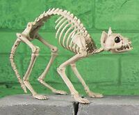 46cm Skeleton Poseable Kitty Cat Bones Halloween Party Decoration Horror Prop BN