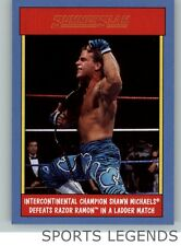 2017 WWE Heritage 30 years of Summerslam #14 Shawn Michaels