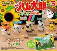 Hamtaro Marching Figure Mascot Set Of 5 Gashapon BANDAI