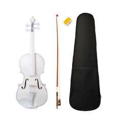 4/4 Size Acoustic Electric Violin Kit with Case Bow Rosin for Beginners Kids