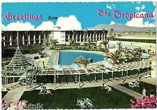 Tropicana Greetings Las Vegas Hotel Casino pool view SWIMMING 1950's postcard r