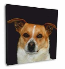 """Jack Russell Terrier Dog 12""""x12"""" Wall Art Canvas Decor, Picture Pri, AD-JR38-C12"""