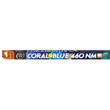 New listing Zoo Med Coral Blue 460nm T8 Actinic Lamps - 15 W - 18 Azmcb-18