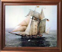 The Pride of Baltimore Sailing Vessel Sailboat Vintage Ship Wall Framed Picture