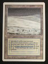 MTG - Revised - N1032 - Tundra Dual Land